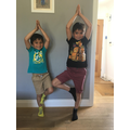 A tree yoga pose by Isaac and Magnus