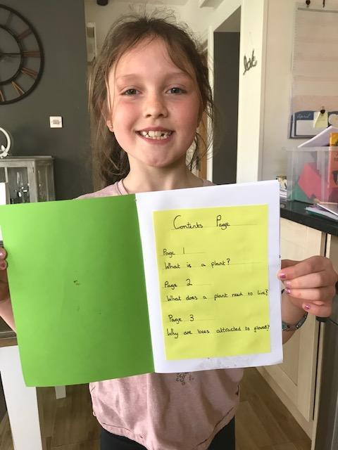 Evie's fantastic Plant Fact File 2
