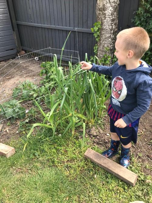 Super gardening!