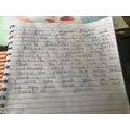 Frances's experiment write-up