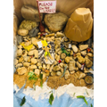Herbie's polluted beach model 2