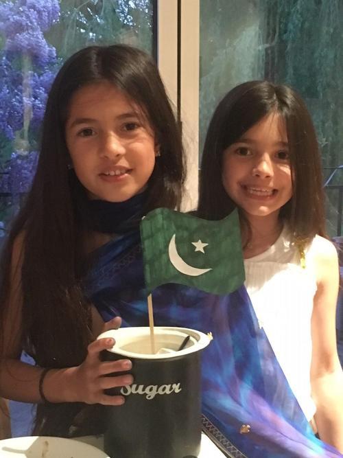 The Pakistan flag
