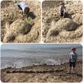 Sam's sand creations