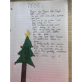 'Trees'  A Poem by Hamish