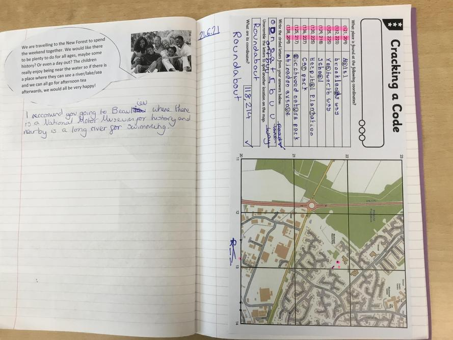 Year 5/6 have been studying the New Forest