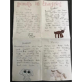 Frances's 'Animals i Transport' research.