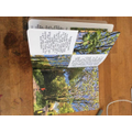 Thea's book about trees (1)