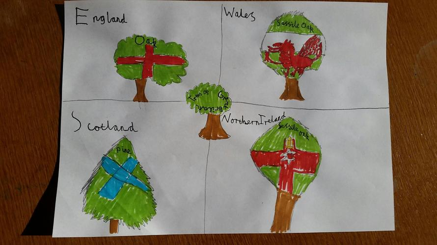 Luke's Tree Flag Designs