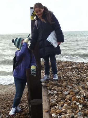 Proof of long shore drift - check out those levels