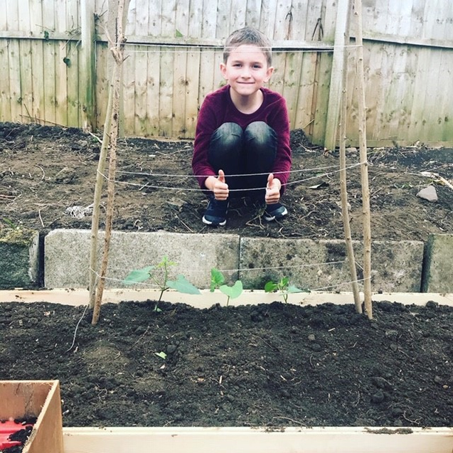 Ethan's vegetable patch