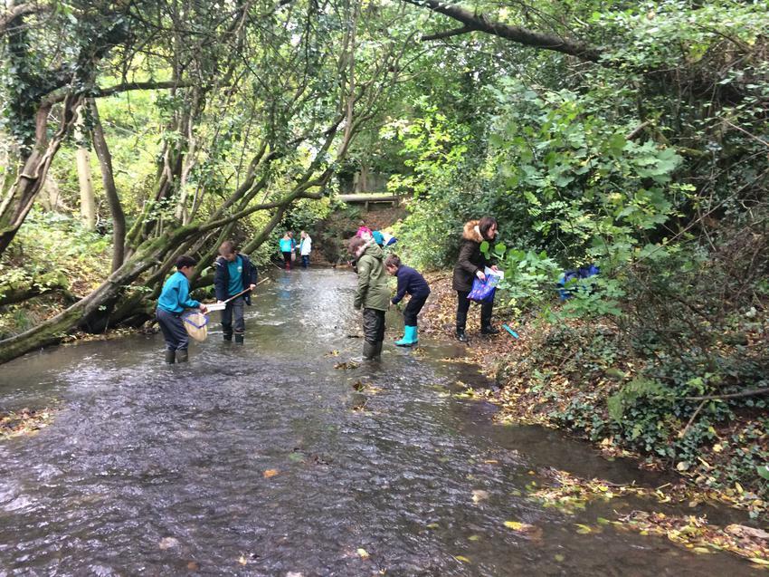 Investigating Rivers 1