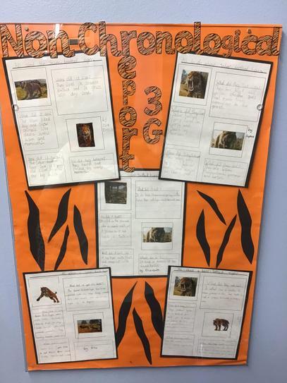 Smilodon non-chronological report