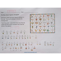 Hieroglyphics are fun and informative, Kasia!