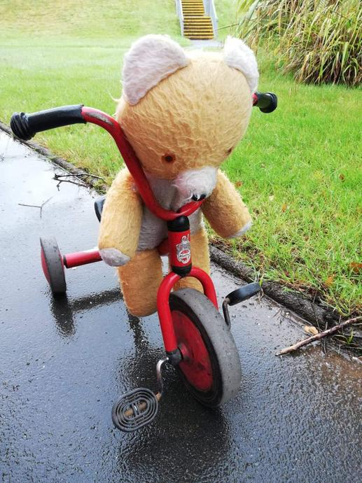 Big Ted has been practising and he can now pedal his bike very quickly around the path.