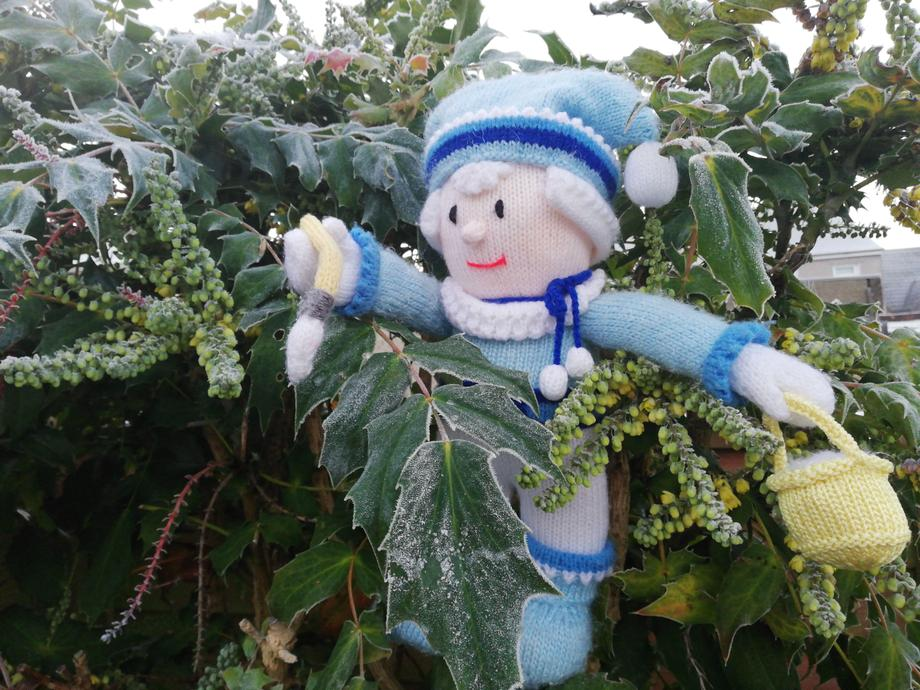 Little Jackie Jack Frost climbs the trees