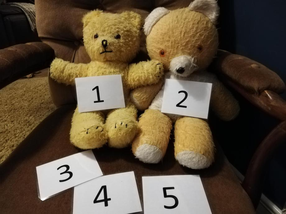 Do you recognise any the numbers Big Ted and Little Ted have found?