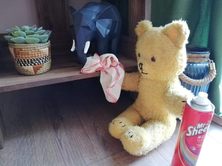 Little Ted sang lots of his favourite songs when he was dusting the shelves.
