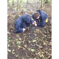 Investigation and questioning- shared learning