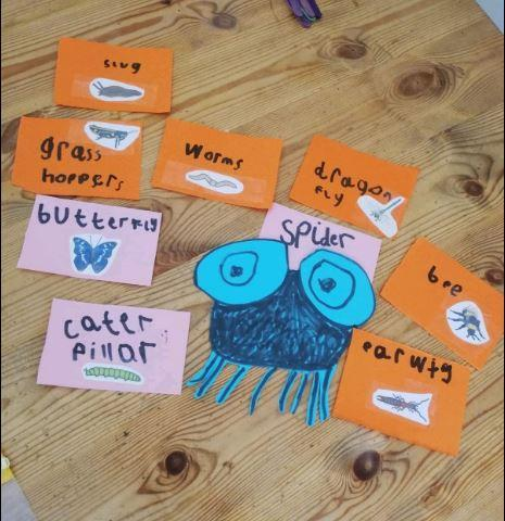 R - Oliver for great mini beast flash cards