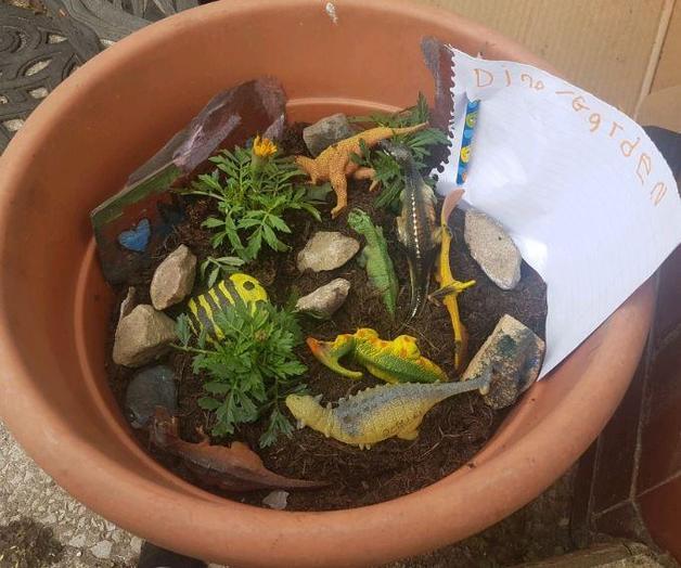 R Lucas - for a fantastic dino story garden