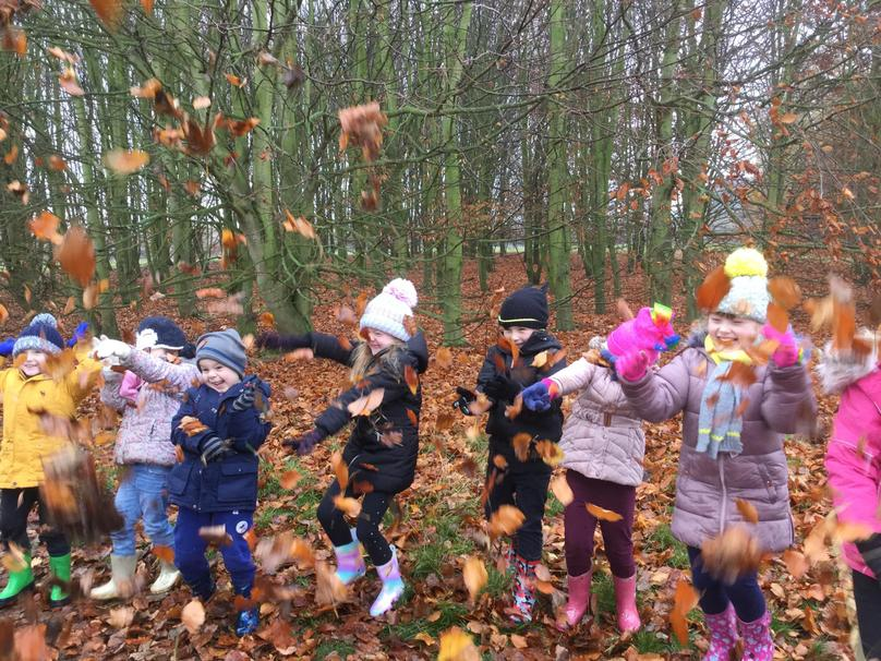 We found lots of Autumn leaves.