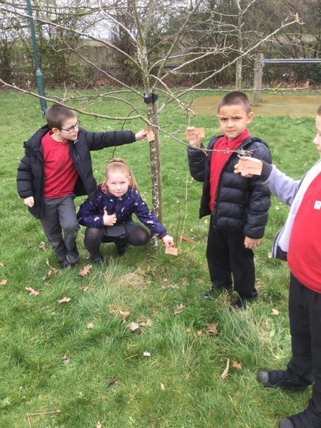 We also labelled the parts of the tree.