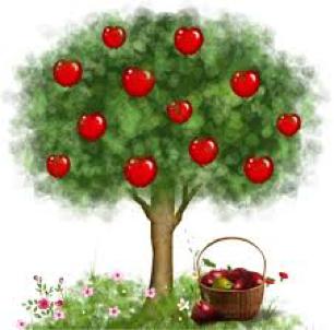 Apple Tree Class