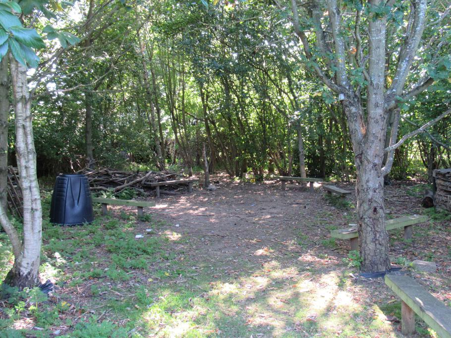 Forest Schools Woodland Area