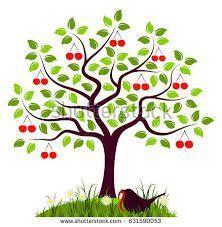 Cherry Tree Class