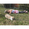 Poppy is enjoying her lovely new rabbit