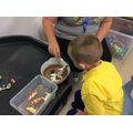Max explored the animals in the sensory materials.