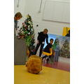Redwood Class as The Lion King