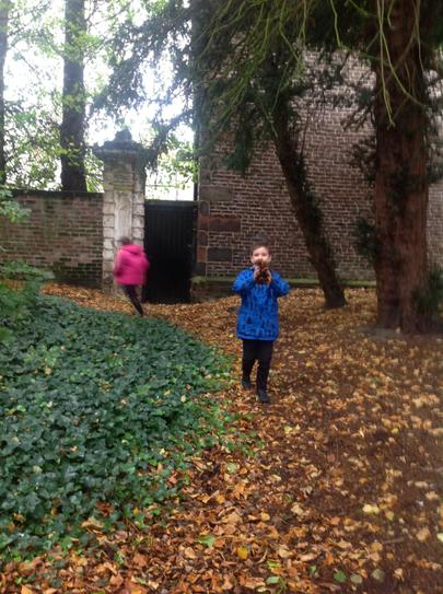 Finding leaves at Croxteth Park