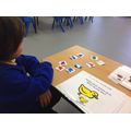 Tolaz progressed to finding the colour and animal.