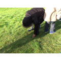 Iyanu identified the grass as natural
