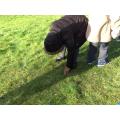 Iyanu identified the grass as natural