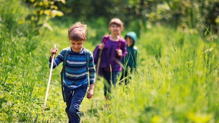 A picture of children hiking through long grass