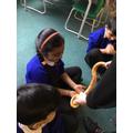 Child Holding snake