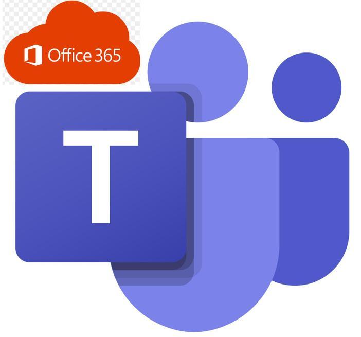 TEAMS/OFFICE WEBSITE LINK