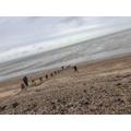 and a relaxing beach-walk break...