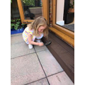Sophie - hunting for minibeasts