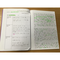Writing a diary entry from a character's viewpoint.