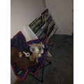 Tommy's new reading area