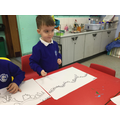 We helped to make our jungle