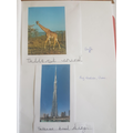 Harry researched the tallest animal and building