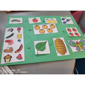 Florence sequenced the Hungry Caterpillar story