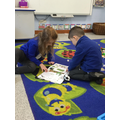 We researched information about the animals