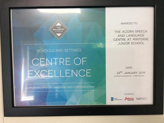 Centre of Excellence for supporting SLCN with Minterne Junior School