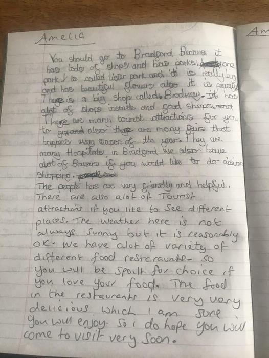 Ameilia's Persuasive writing