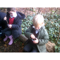 We used leaves and soil.